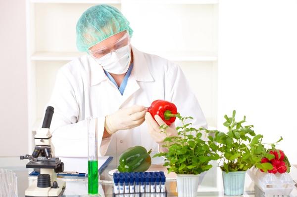 Chuyên ngành công nghệ thực phẩm