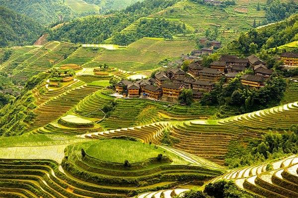 ruong-bac-thang-Cordillera